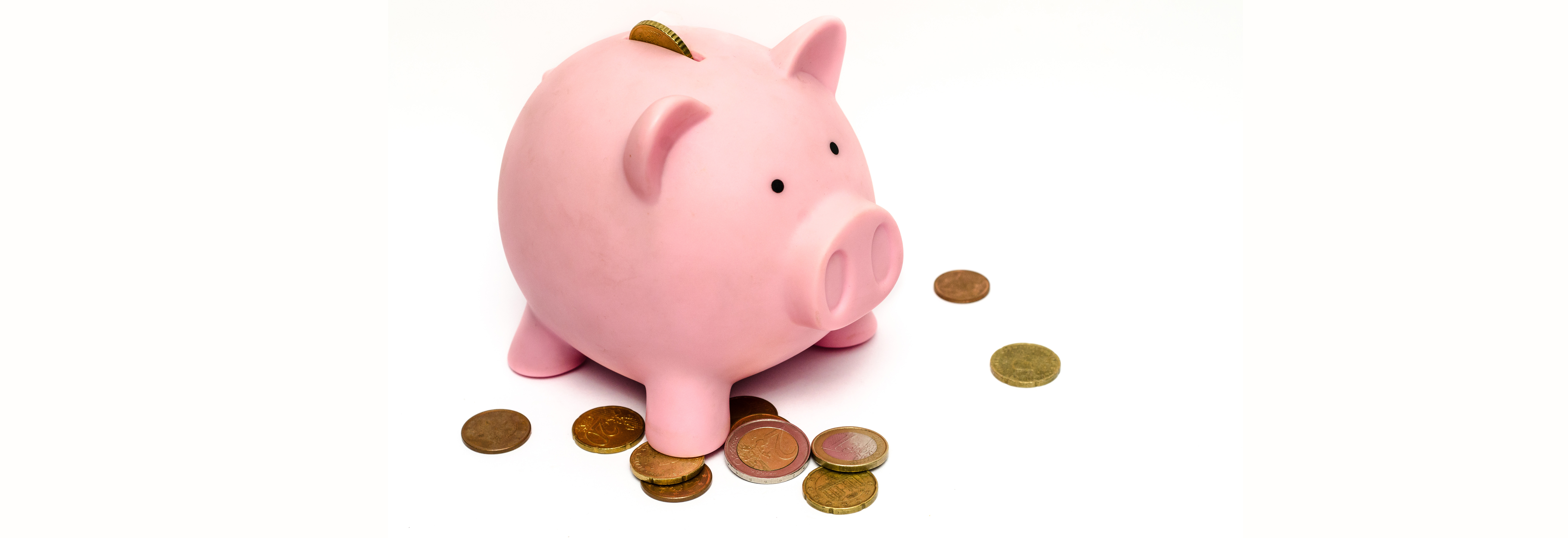 business-money-pink-coins-banner